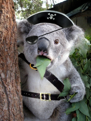I let Leo choose the picture. His gift to you is Koala Pirate.